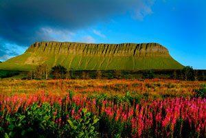 Ireland Tour Guide