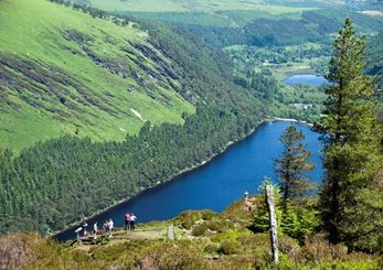 Things to Do in Ireland - Explore Popular Tours